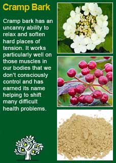 Richard Whelan ~ Medical Herbalist ~ Vitex